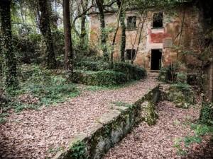 Lerici, la villa del Fodo alla Rocchetta    (2013)    (foto Alessandro Fiorentini)