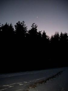 Alta Via dei Monti Liguri, Passo del Rastrello: la luna, il bosco, la neve (2011) (foto Giorgio Pagano)