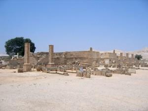 Palestina, Gerico, il Palazzo di Hisham   (2007)   (foto Giorgio Pagano)
