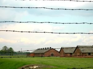 Auschwitz  (2005)    (foto Giorgio Pagano)