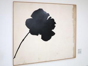 """Milano, Museo del Novecento: """"La rosa nera"""" di Jannis Kounellis    (2014)    (foto Giorgio Pagano)"""