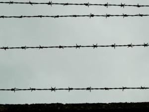 Auschwitz-Birkenau  (2005)  (foto Giorgio Pagano)