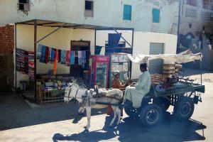 Egitto, Luxor (2012) (foto Giorgio Pagano)