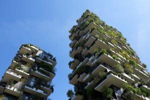 Milano, Bosco verticale (2017) (foto Giorgio Pagano)